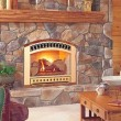 Fireplace Inserts:  Pros and Cons